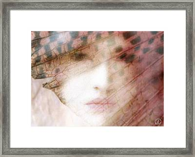 Through A Butterfly Wing Framed Print by Gun Legler