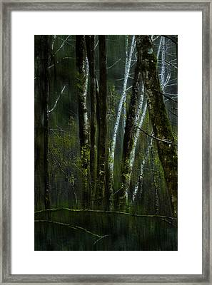 Framed Print featuring the photograph Through A Glass . . . Darkly by Belinda Greb