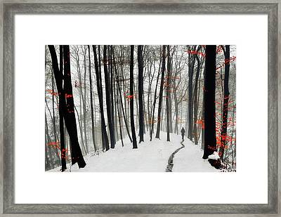 Through Autumn And Winter Framed Print