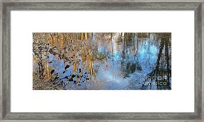 Through My Eyes Framed Print by Delona Seserman