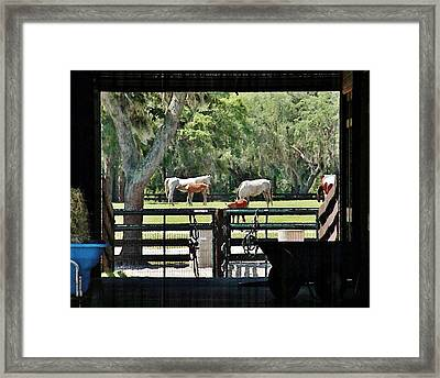 Through The Barn Door Framed Print by Kim Bemis
