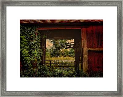 Through The Barn Door Framed Print