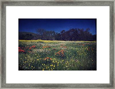 Through The Blooming Fields Framed Print by Laurie Search