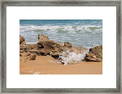 Through The Coquina Framed Print