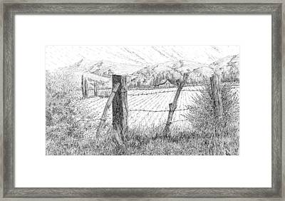 Through The Fence Framed Print