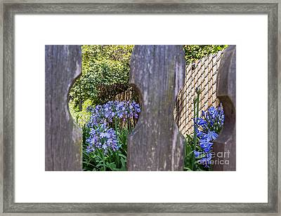 Framed Print featuring the photograph Through The Fence by Kate Brown