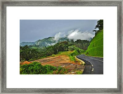 Through The Forest Framed Print by Manu G
