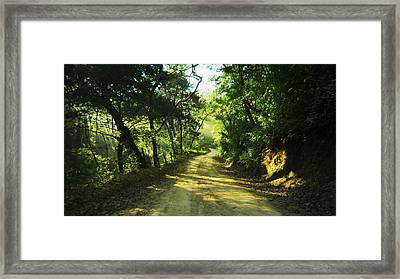 Through The Jungle Framed Print by Aged Pixel