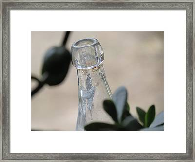 Through The Leaves Framed Print by Devin Stone