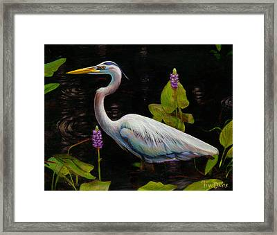 Through The Pickerelweed Framed Print by Tim Davis
