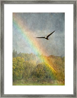 Through The Rainbow Framed Print by Angie Vogel
