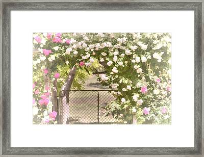 Framed Print featuring the photograph Through The Rose Arbor by Elaine Teague