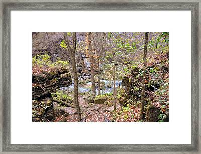 Through The Trees At Greer Spring Framed Print