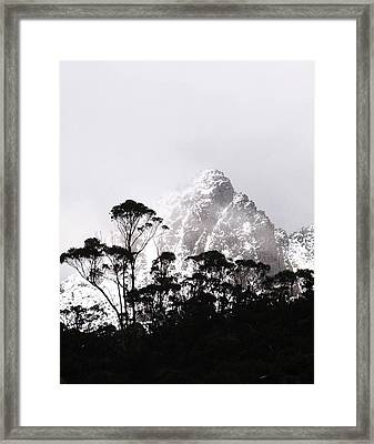 Through The Trees Come Mountains Framed Print by Lee Stickels