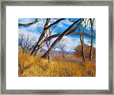 Through The Trees Framed Print by Julie Maas