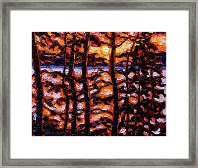Through The Trees Framed Print by Rob MacArthur
