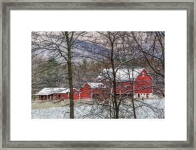 Through The Trees Framed Print by Stephanie Calhoun