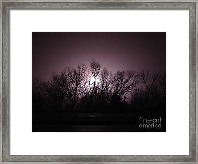 Through The Trees Framed Print