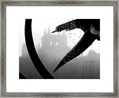 Through The Web Framed Print by Meaghan Troup