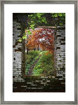 Through The Window Framed Print by Debra and Dave Vanderlaan