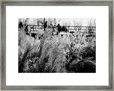 Through The Winter Grasses Framed Print by Jon Woodhams