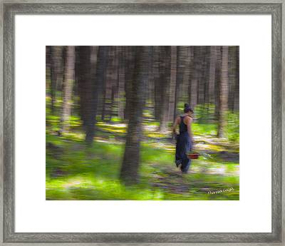 Through The Woods 2 Framed Print by Theresa Tahara