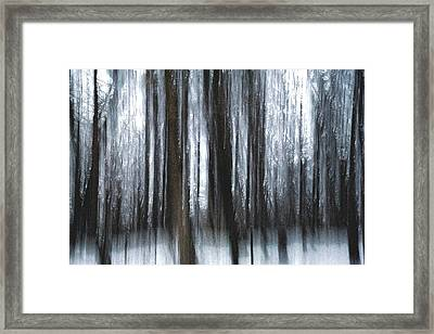 Framed Print featuring the photograph Through The Woods by Steven Huszar