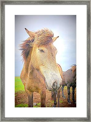 I Am Throwing My Hair In The Wind Framed Print by Hilde Widerberg