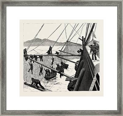 Throwing Out Torpedo-nets To Protect The Sultan Framed Print by English School