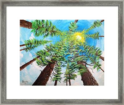 Thru The Pines Framed Print by Jim Bowers