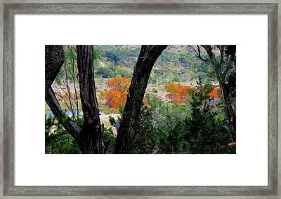 Framed Print featuring the photograph Thru The Trees by David  Norman