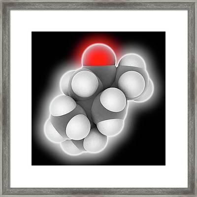 Thujone Molecule Framed Print by Laguna Design