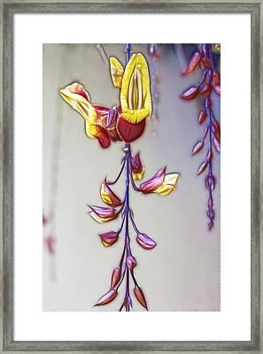 Thunbergia Framed Print by Photographic Art by Russel Ray Photos