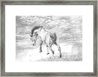 Thunder And Lightning Framed Print