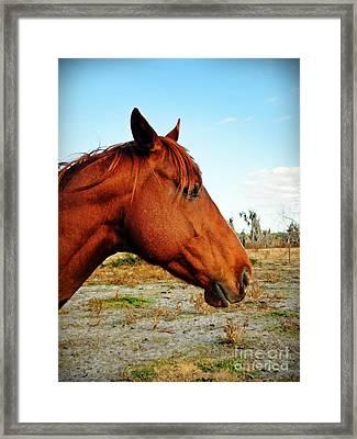 Thunder Framed Print by Ines Bolasini
