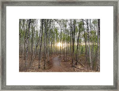 Thunderbird Trail Framed Print