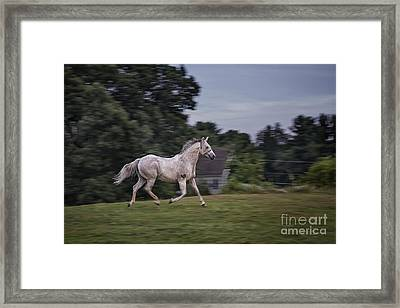 Thundersoul Framed Print by Evelina Kremsdorf