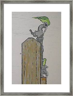 Thursty Birds Framed Print by John  Svenson