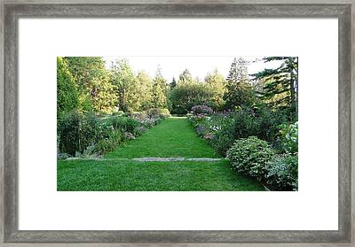 Thuya Gardens In Northeast Harbor Maine Framed Print