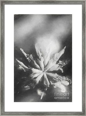 Thy Art In Dying Framed Print