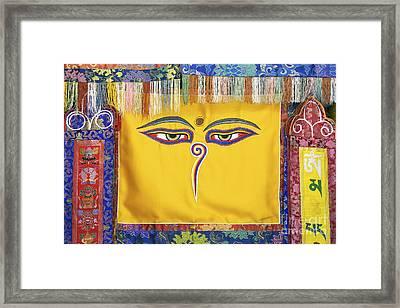 Tibetan Eyes Framed Print by Tim Gainey