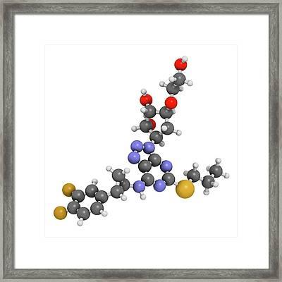 Ticagrelor Platelet Inhibitor Drug Framed Print by Molekuul