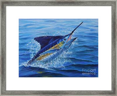 Ticked Off Blue Marlin Framed Print by Jay Prentice