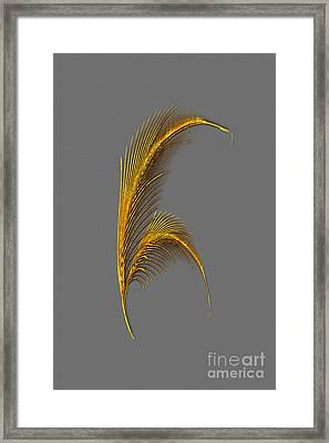 Tickle Feathers Framed Print