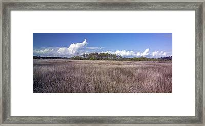 Framed Print featuring the photograph Tidal Marsh On Roanoke Island by Greg Reed