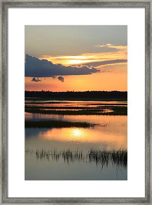 Tidal Marsh- Wilmington Nc Framed Print