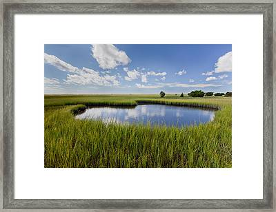 Tidal Pool Image Art Framed Print