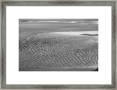 Tide Pool I Framed Print by Amanda Holmes Tzafrir