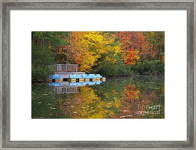 Tidewater Autumn Framed Print