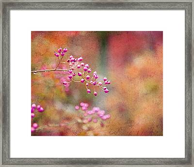 Tie Dyed Berries In Pink Orange And Gold  Framed Print
